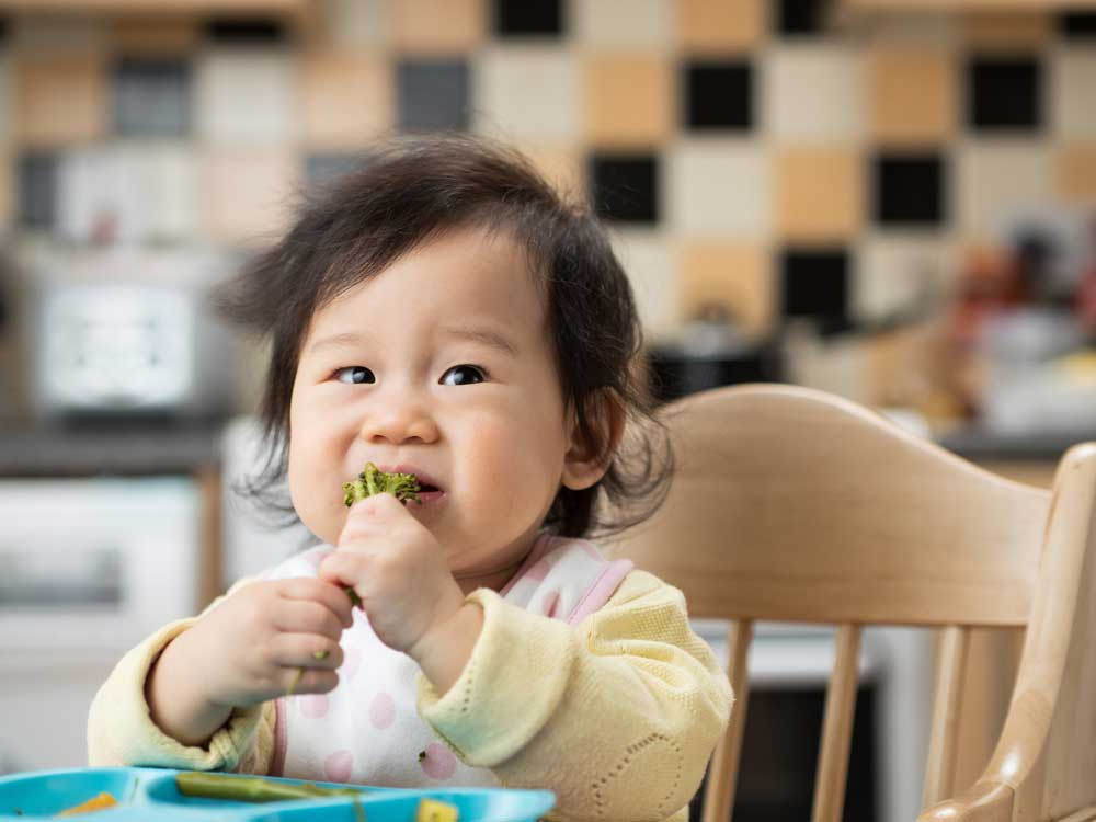 Mengenal Baby Led Weaning, Yes or No?