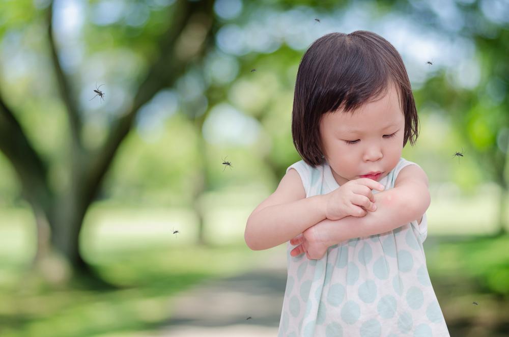 Kenali Zika Si Virus Berbahaya